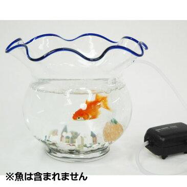 金魚鉢 中 ぶくぶくセット(水量:約1.9L)