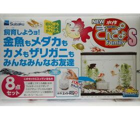 琉金和金淡水魚/水作きんぎょファミリーS(30cmガラス水槽金魚セット)【あす楽】