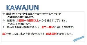 KAWAJUN (カワジュン) 薄型でシンプルなニューサポートチェア AS-359-H1