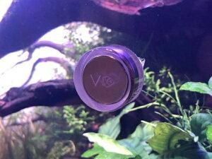 【VERTEX】CLEANER MAG-SIMPLEX 熱帯魚・アクアリウム 無脊椎 アクアテイラーズ
