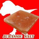 バーベキューに岩塩プレートバーベキュー、岩塩プレート、ジュラシックソルト Lサイズプレート...