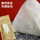 パワースポットから奇跡のお茶 べにふうきの ティーバッグ(2g x 20包)べにふうき 緑茶(日本茶)【B】