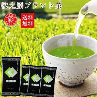 抹茶と緑茶の違いは?