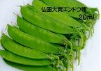 きぬさや豌豆 種 仏国大莢20ミリリットル(約40粒) 大型キヌサヤエンドウの代表種 柔らかく肉厚甘くて風味が良い 11月まき 5~6月収穫 つるあり 白花