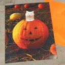 ハロウィーンカード「Big smile」カボチャのジャック・オ・ランタンから白猫 【グリーティングカ ...