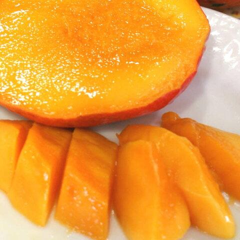 「冷凍国産カットマンゴー」木から落ちるまで完熟させた和歌山有田川町上山さんのこだわり完熟マンゴー「マンゴースムージー」