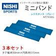 NISHI ニシ スポーツ ミニバンド レジスタンス ブルー 3本組 セット NT7930G インナーマッスル トレーニング チューブ 2016年モデルチェンジ