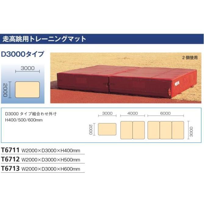 NISHI(ニシ・スポーツ)T6712 【陸上競技】 走高跳用トレーニングマット D3000タイプ(W2000×D3000×H500mm) 高品質・高機能の練習用マット効果的なショック吸収力をもつ内部構造