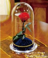 魔法の薔薇HappyWishRose