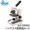 レイメイ藤井 ハンディ顕微鏡DX グレー RXT300N