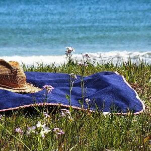 【tarasukin bonkers TARP blanket】タラスキン ボンカース ブランケット デニム 敷物 マット ひざ掛け ギフト■ 送料無料■ あす楽■ ラッピング無料
