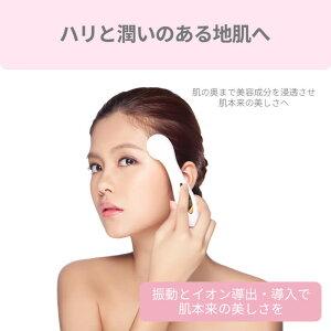Aretiアレティクラリティ:リンクル(L)イオン導入型美顔器Clarity:wrinkle(L)