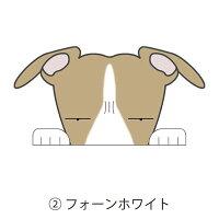 見てまステッカー犬イタリアングレーハウンドイタグレ犬ステッカー車窓玄関見てます犬種別名入れビッグサイズグッズドッグシールカーステッカー【イタリアングレーハウンド】