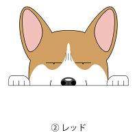 見てまステッカーウェルシュ・コーギー・ペンブロークコーギー犬ステッカー車犬ステッカー窓玄関犬種別グッズドッグシールカーステッカー【コーギー】