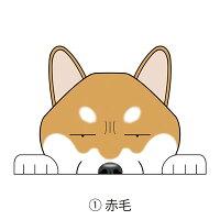 見てまステッカー柴犬SIBA和犬日本犬犬ステッカー車犬ステッカー窓玄関見てます犬種別名入れビッグサイズグッズドッグシールカーステッカー【柴犬】