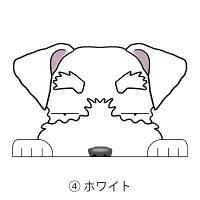 見てまステッカーミニチュアシュナウザーシュナウザーシュナたれ耳犬ステッカー車犬ステッカー窓玄関犬種別グッズドッグシールカーステッカー【ミニチュアシュナウザー】