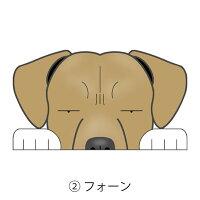 見てまステッカー犬ピットブルステッカーピットアメリカンピットブルテリアたれ耳車犬ステッカー窓玄関見てます犬種別名入れビッグサイズグッズドッグシールカーステッカー【ピットブル】