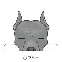 見てまステッカー犬ピットブルステッカーピットアメリカンピットブルテリア立ち耳車犬ステッカー窓玄関見てます犬種別名入れビッグサイズグッズドッグシールカーステッカー【ピットブル】