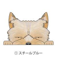 見てまステッカー犬ヨークシャーテリアステッカーヨーキーヨークシャテリア車犬ステッカー窓玄関見てます犬種別名入れビッグサイズグッズドッグシールカーステッカー【ヨークシャーテリア】