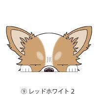 ミニ見てまステッカーチワワチワワロングコートロングチワワ犬ステッカー犬種別ドッグステッカーグッズ