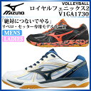 ミズノ ロイヤルフェニックス 2 バレーボール V1GA1730 標準ラスト 2E MIZUNO