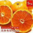 【予約販売】フレッシュジュース用(加工用)完熟有田みかん 5