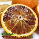 【先行予約】農家直送!土井さんの濃厚ブラッドオレンジ 3kg【送料無料】【北海道・沖縄はお届け不可】