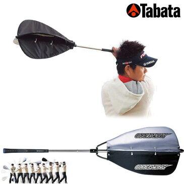 タバタ Fujita CORE SWING (藤田コアスイング) GV-0233 【あす楽対応】 [有賀園ゴルフ]