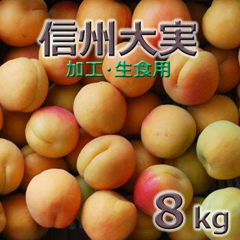 フルーツ・果物, あんず 2020 8kg78kg(330)