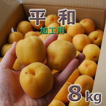 フルーツ・果物, あんず 2020 8kg8kg(330)