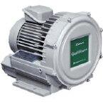 昭和電機 電動送風機 渦流式高圧シリーズ ガストブロアシリーズ(0.3kW) U2V30S昭和 送風機オフィス住設用品環境改善機器送風機【TN】【TD】