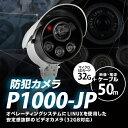 音録機能・人感センサー/H264付き防犯カメラ(32GB迄対応)防犯カメラ P1000JP-50(32GBマイク...