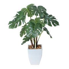 光触媒 消臭 抗菌 造花 観葉植物 人工観葉植物 モンステラ インテリアグリーン 卓上 テーブ…