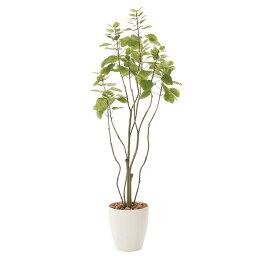 人工観葉植物光触媒観葉植物フェイクグリーンインテリア人工植物高さ130cmフィカスブランチツリー1.3消臭抗菌防汚