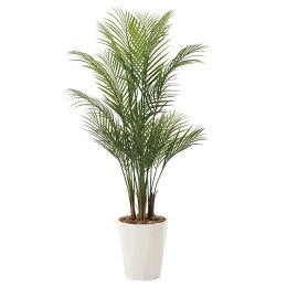 人工観葉植物光触媒観葉植物フェイクグリーンインテリア人工植物高さ115cmアレカパーム1.35消臭抗菌防汚