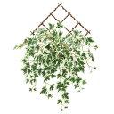 人工観葉植物 光触媒 壁掛け フェイクグリーン インテリア 消臭 抗菌 人工植物 高さ48cm 壁掛斑入りアイビー 防汚