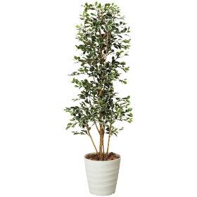 光触媒観葉植物ガジュマルタワーG/W高さ170cmフェイクグリーンアートグリーン送料無料
