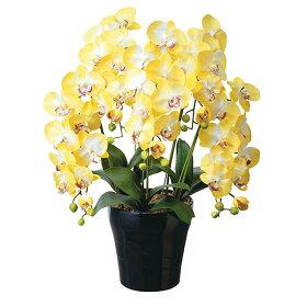 光触媒胡蝶蘭コチョウラン造花人工観葉植物クイ-ン胡蝶蘭Y5本立ち送料無料