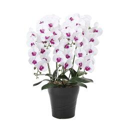胡蝶蘭 光触媒 インテリア アートフラワー ギフト 造花 人工観葉植物 ホワイト 紫 パープル