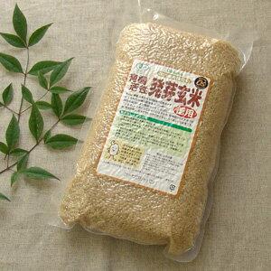 【有機JAS認定品】生命力あふれる発芽玄米オーサワ 活性発芽玄米 2kg
