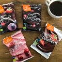 オーガニック フリーズドライ チョコレートベリー ランドガルテン フルーツとチョコレートの素敵なハーモニー チェリー ストロベリー ラズベリー グルテンフリー オーガニックチョコレート チョコ 【メール便対応可」
