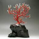 日本産・血赤珊瑚『拝見』【3月の誕生石『珊瑚(さんご・サンゴ)』】【送料無料】【smtb-m】