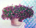 油絵 特価 卓上のサフィニア 1
