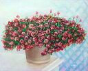 油絵 特価 卓上のサフィニア 2