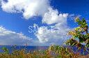 風景写真ポスター沖縄北大東島の海青い空と青い海風景 ポスター 風水 玄関 に 飾る 絵 壁掛け インテリア 絵 海 タペストリー osp-k10
