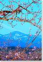 桃と吾妻の雪うさぎ福島風景写真パネルクロス地壁飾りやインテリアに美しい風景写真パネルを。インテリア ディスプレイ 模様替え タペストリー 風景ポスターに最適。新築祝い 引っ越し祝いプレゼントなどにも。