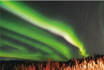 ポストカード5枚で【送料無料】メッセージカード ポストカード ハガキ 葉書 はがき アラスカ オーロラハウスからのオーロラ 風景 写真 ギフト お祝い プレゼント お手紙 PST-152