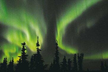ポストカード5枚で【送料無料】アラスカ フェアバンクス オーロラハウスからX状のオーロラ 風景 写真 オーロラ ポストカード ハガキ 葉書 はがき ギフト お祝い お手紙 PST-155
