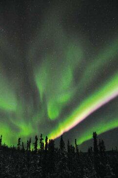 ポストカード5枚で【送料無料】オーロラ ポストカード ハガキ 葉書 はがき アラスカ フェアバンクス 緑 黄 赤の縞色のオーロラ 風景 写真 ギフト お祝い お手紙 PST-159
