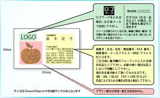 カラーデザイン名刺ショップカード印刷作成【100枚】オリジナルロゴ入れ可花フラワーかわいいflower001